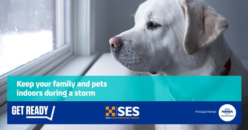 Keep your family and pets indoors during a storm