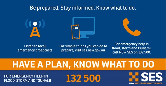 Have a plan, know what to do before emergencies graphic